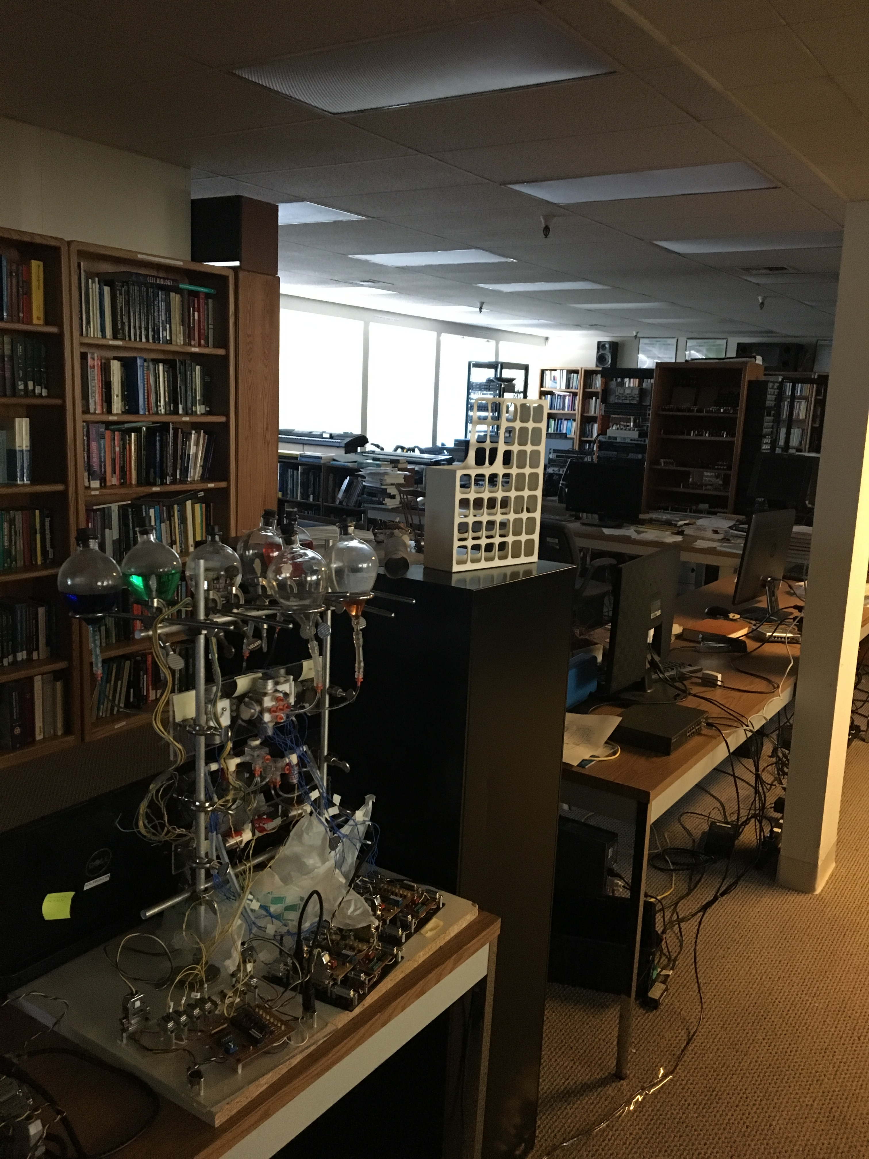 BioSensorChem-BioSensor-Chem-Lab-IMG_5878